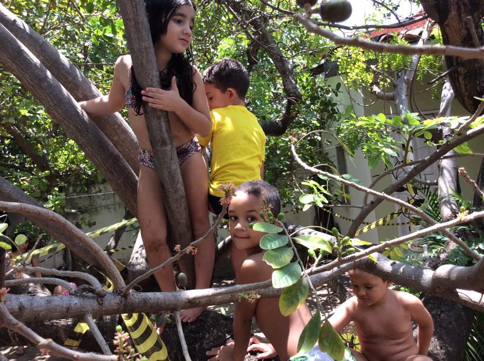 festa em casa brincadeiras na árvore